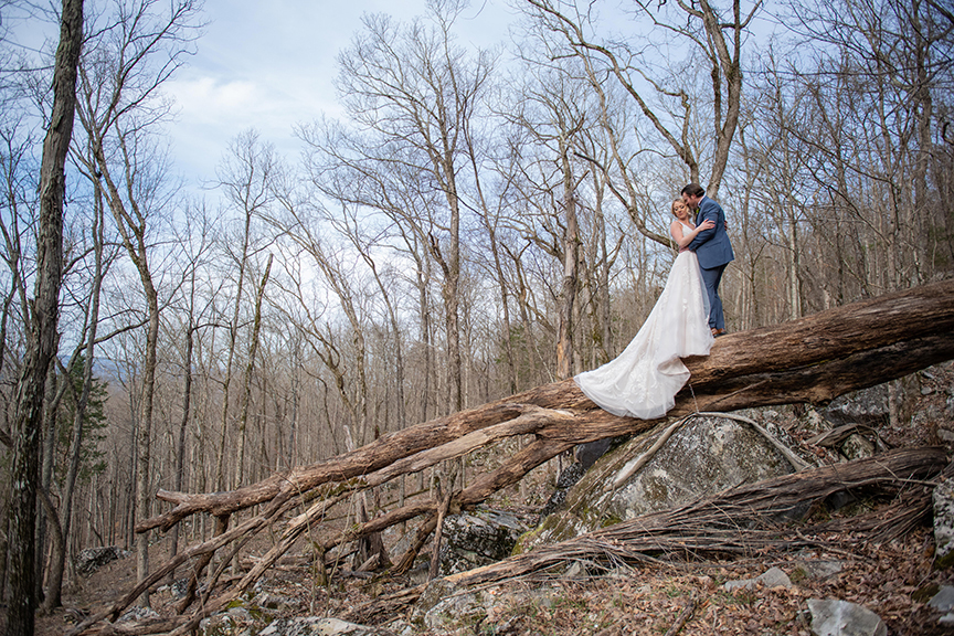 Wedding photography set in an old forest. Bride and groom posing on a large fallen tree, view of mountains in the background